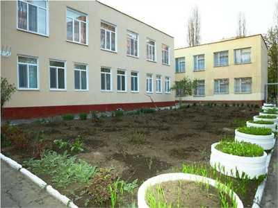 Детский сад 203 Аистенок